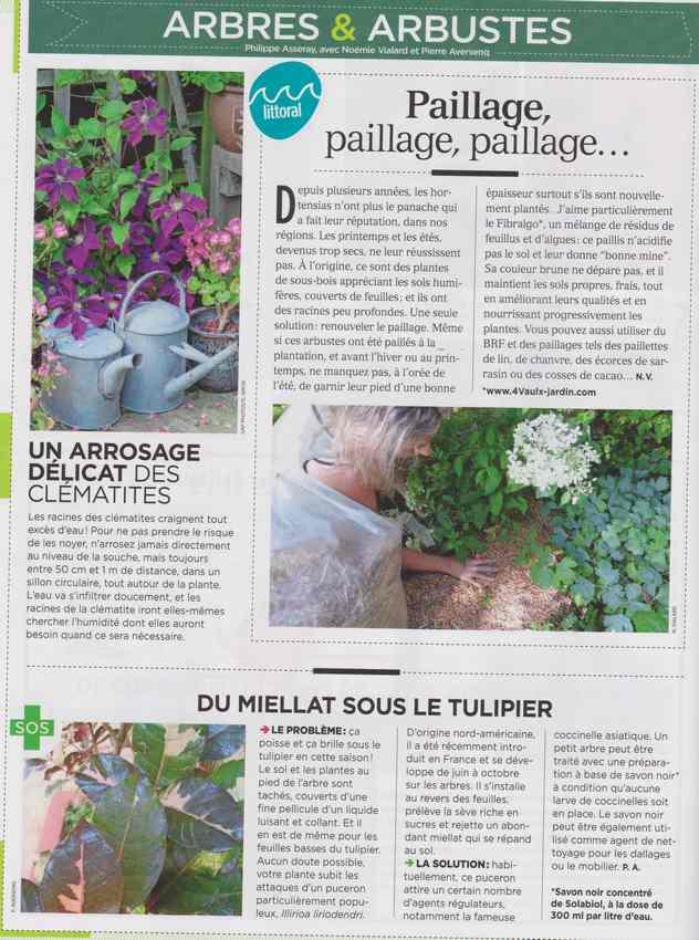 au jardin - Page 7 627