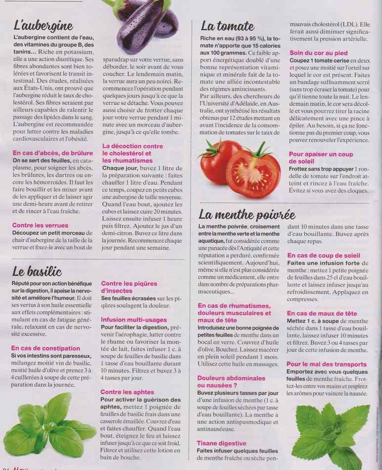 les plantes qui soignent - Page 7 632