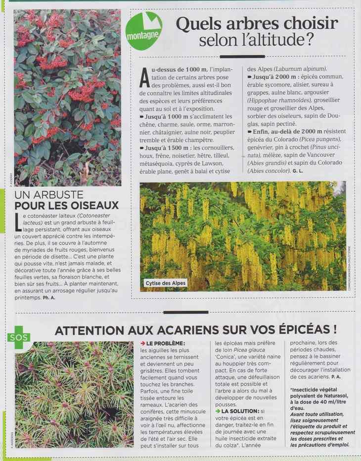 au jardin - Page 10 634