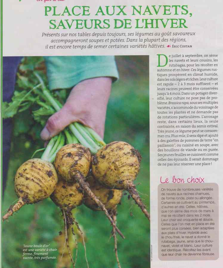 au jardin - Page 11 638