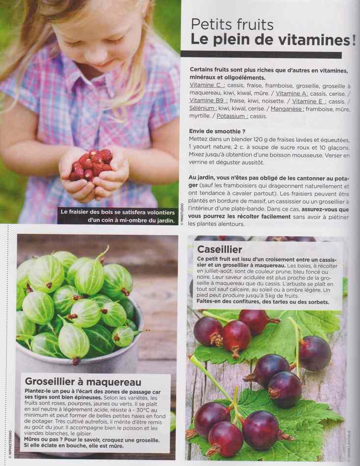 au jardin - Page 17 6510