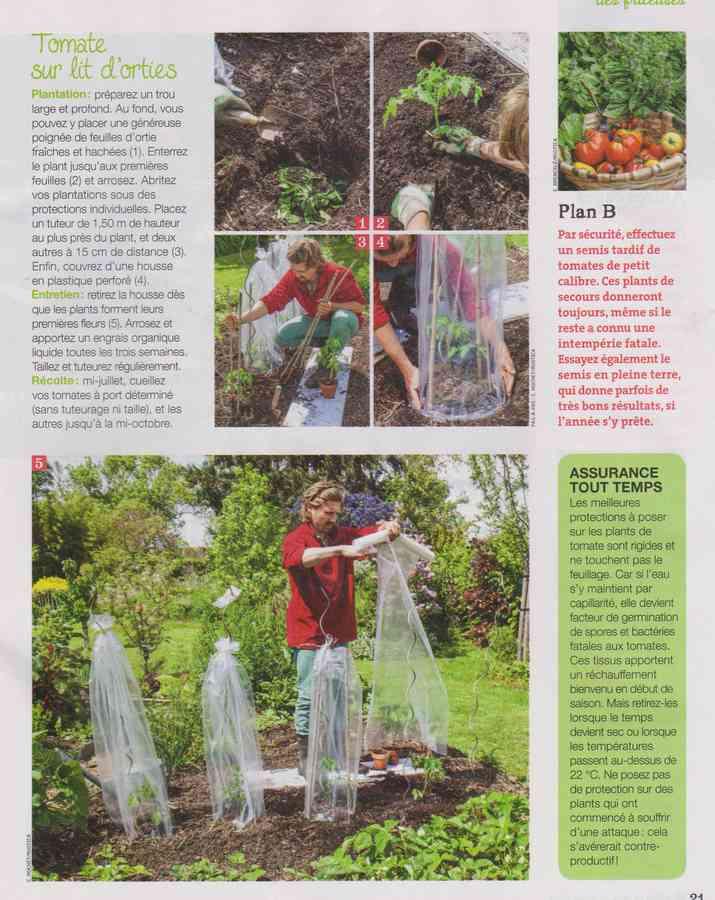 au jardin - Page 34 668