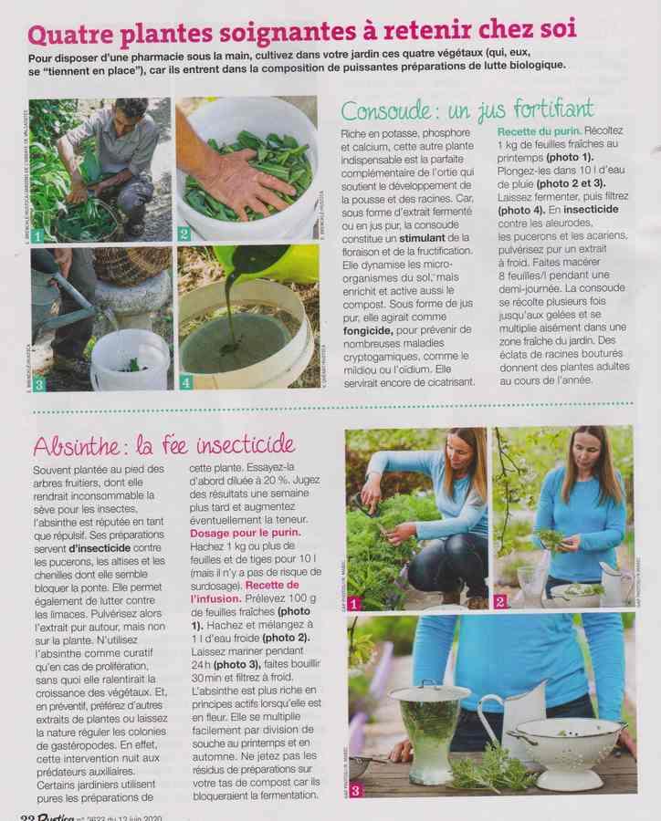 au jardin - Page 36 670