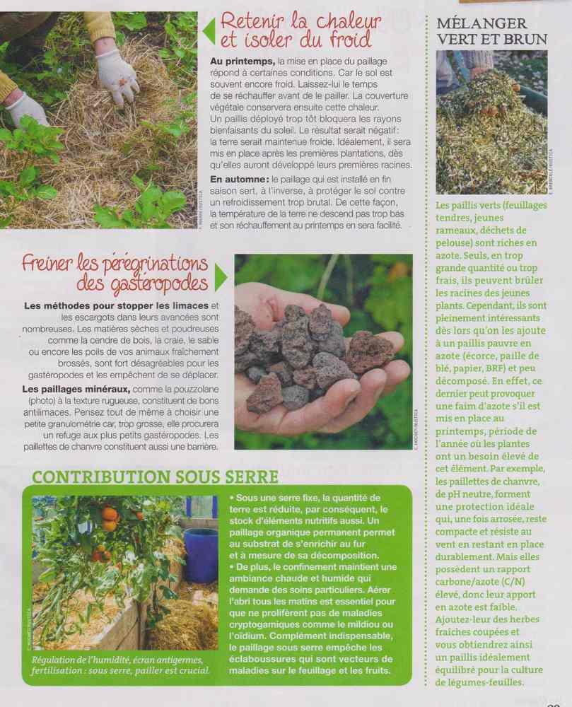 au jardin - Page 5 718