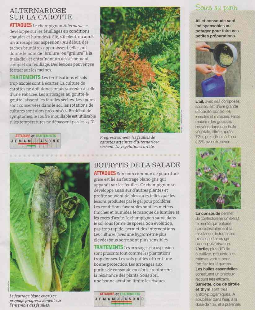 au jardin - Page 6 723