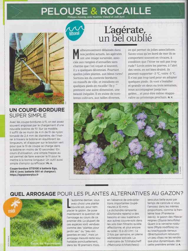 au jardin - Page 7 725