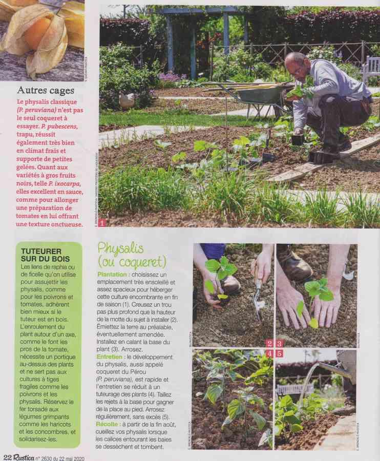 au jardin - Page 34 778