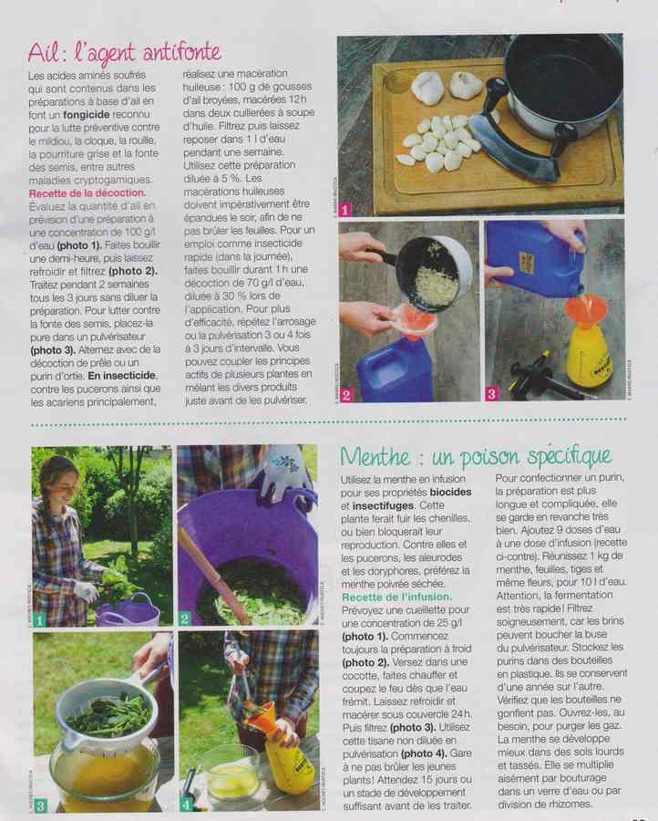 au jardin - Page 36 780