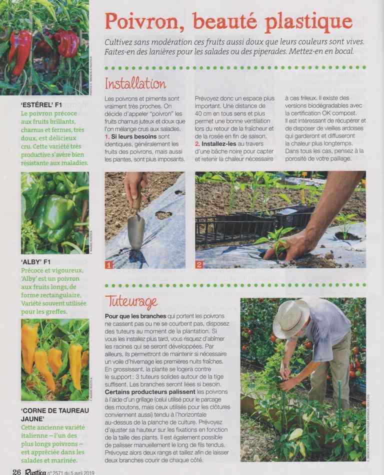 au jardin - Page 3 814