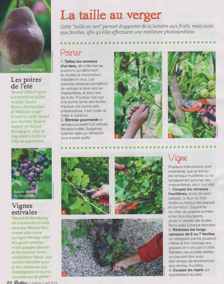 au jardin - Page 9 828