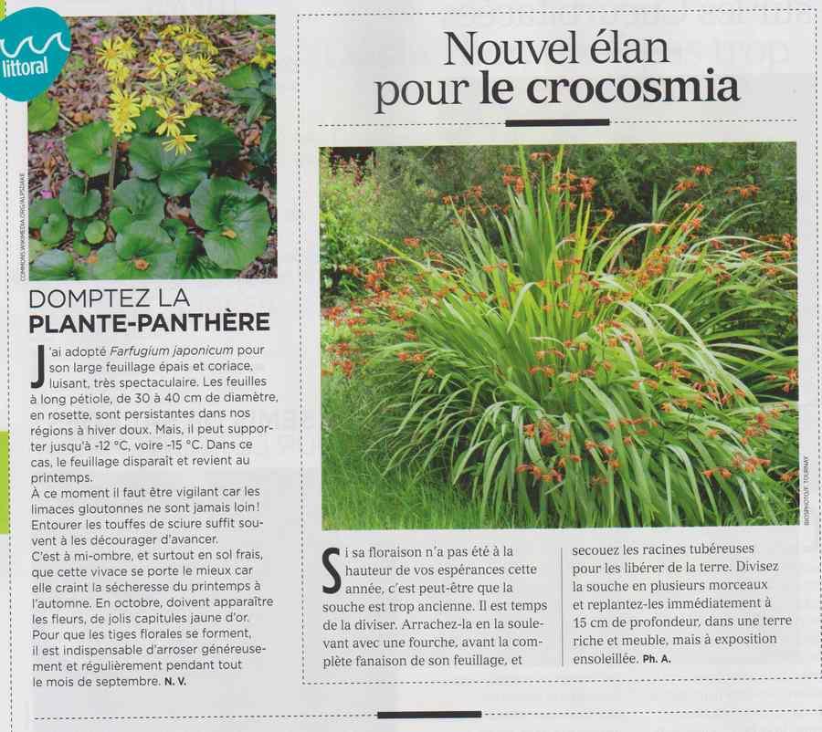 au jardin - Page 10 832