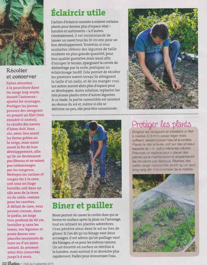 au jardin - Page 11 835