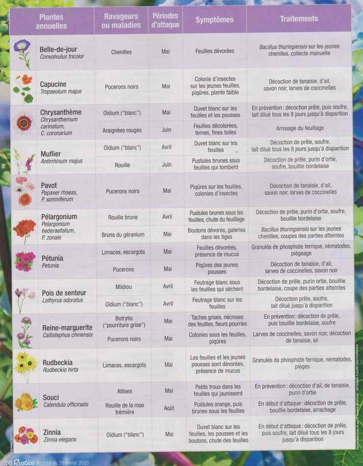 au jardin - Page 28 852