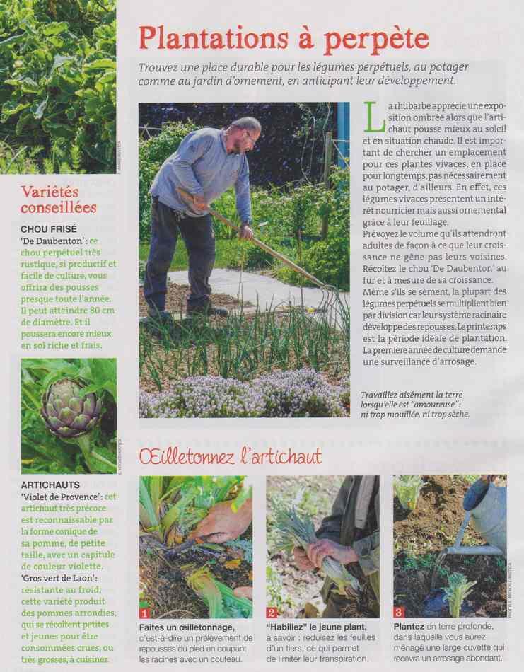 au jardin - Page 3 913