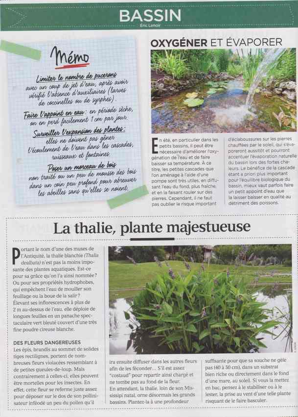 au jardin - Page 7 922
