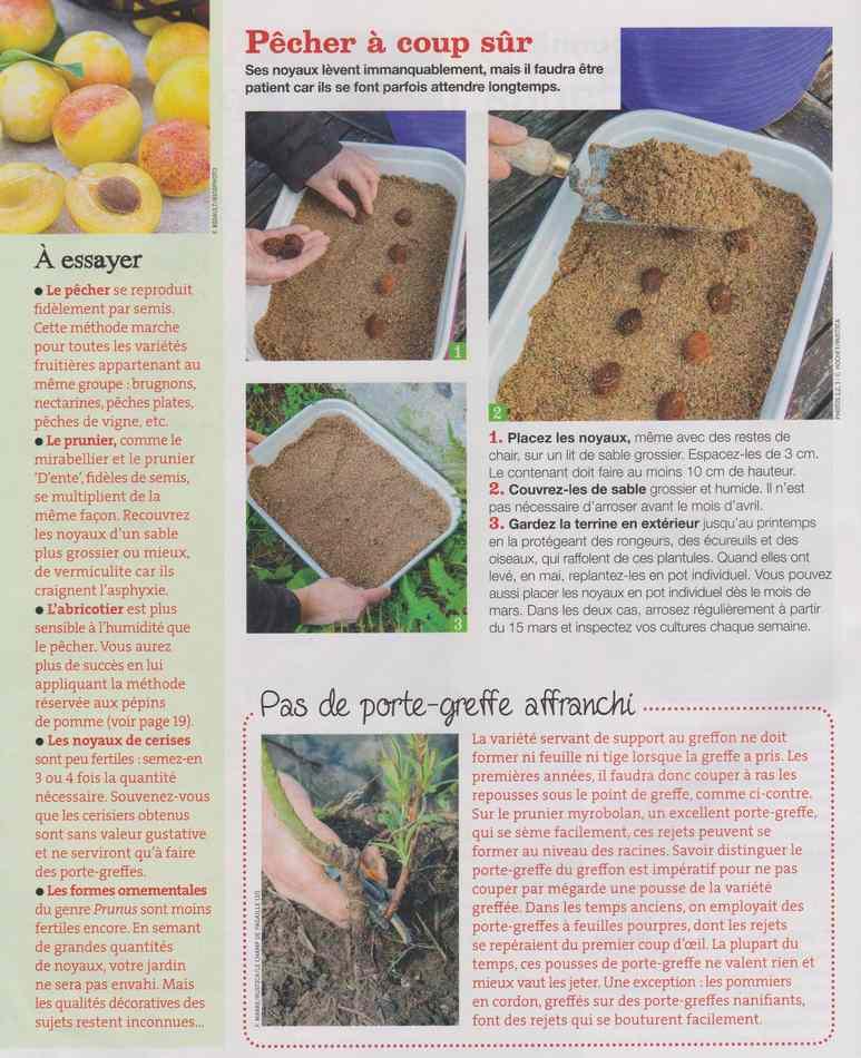 au jardin - Page 9 925