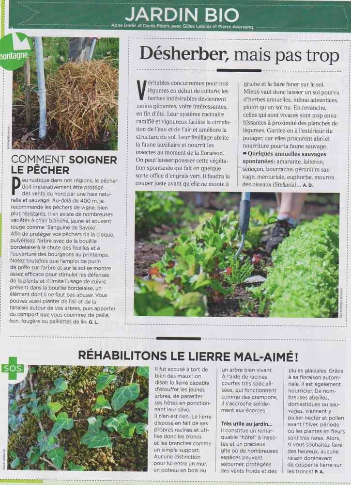 au jardin - Page 10 928
