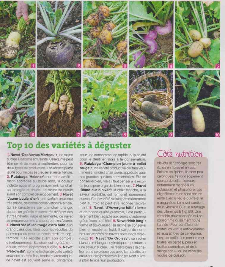 au jardin - Page 11 931