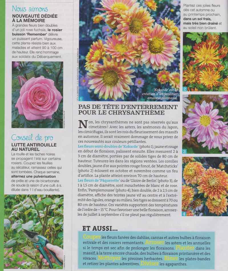 au jardin - Page 16 934