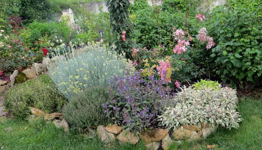 Concours..........'Scènes de jardin' !!! - Page 3 99910
