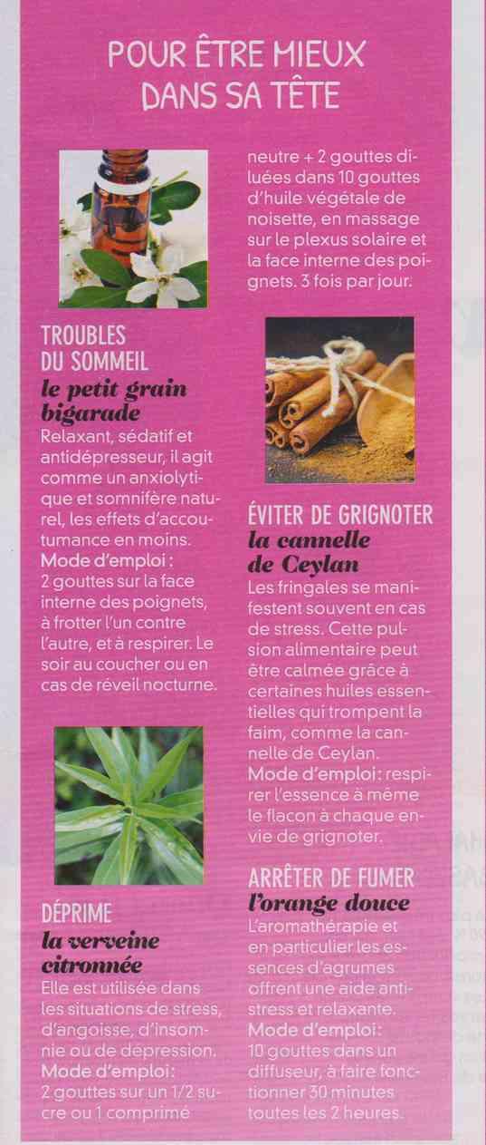 les plantes qui soignent - Page 3 A31