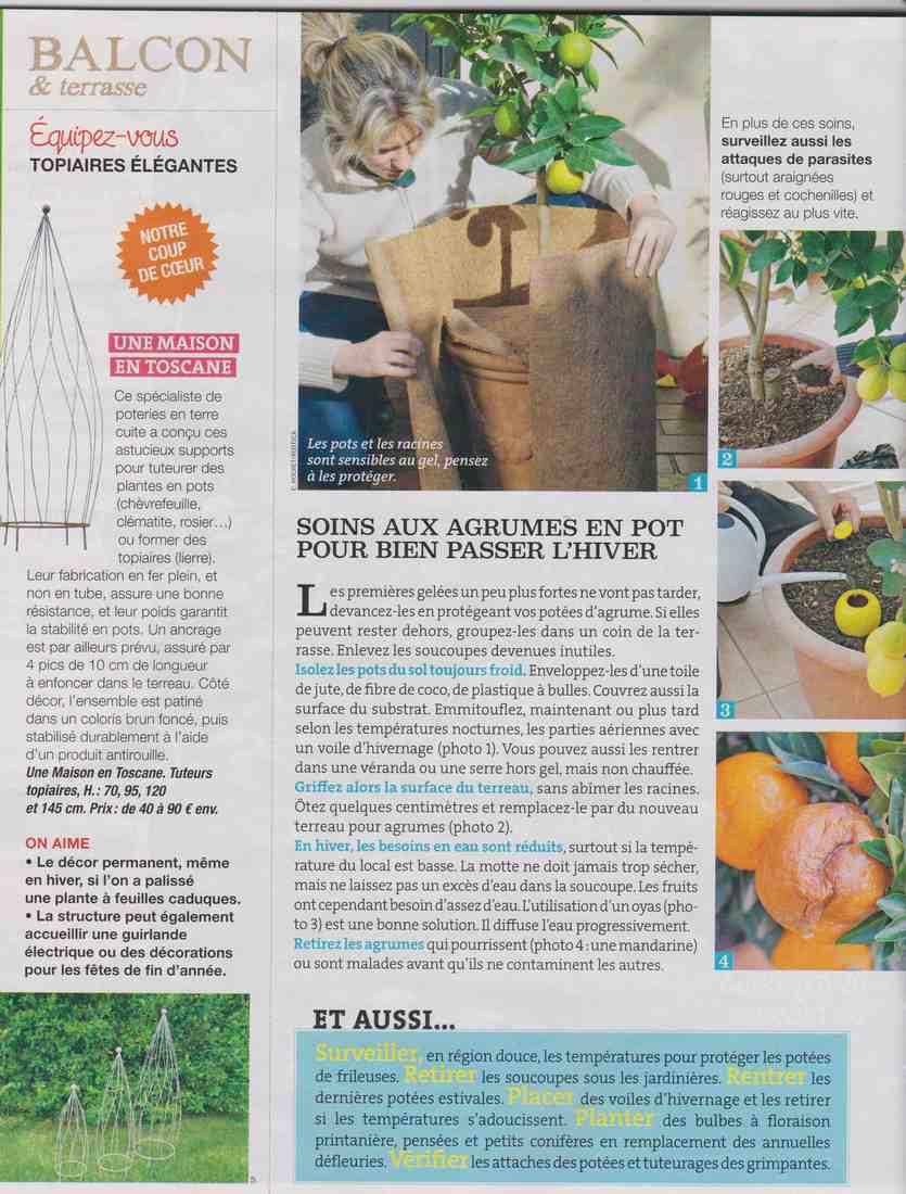 préparer l'automne et l'hiver - Page 3 A314