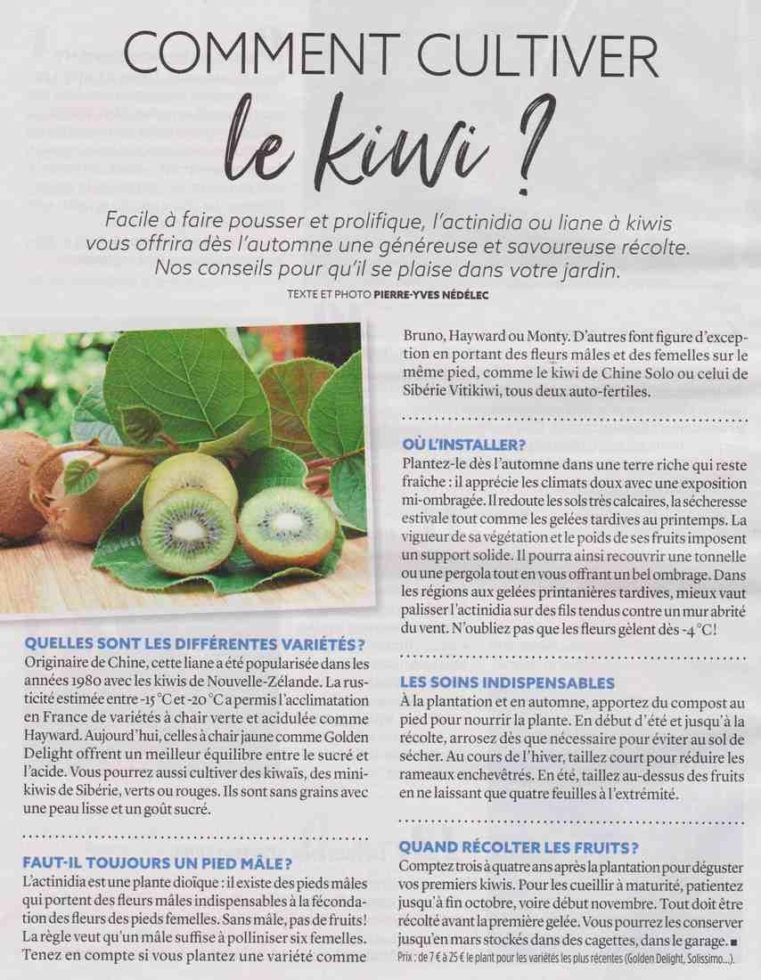 le Kiwi Aaaa14