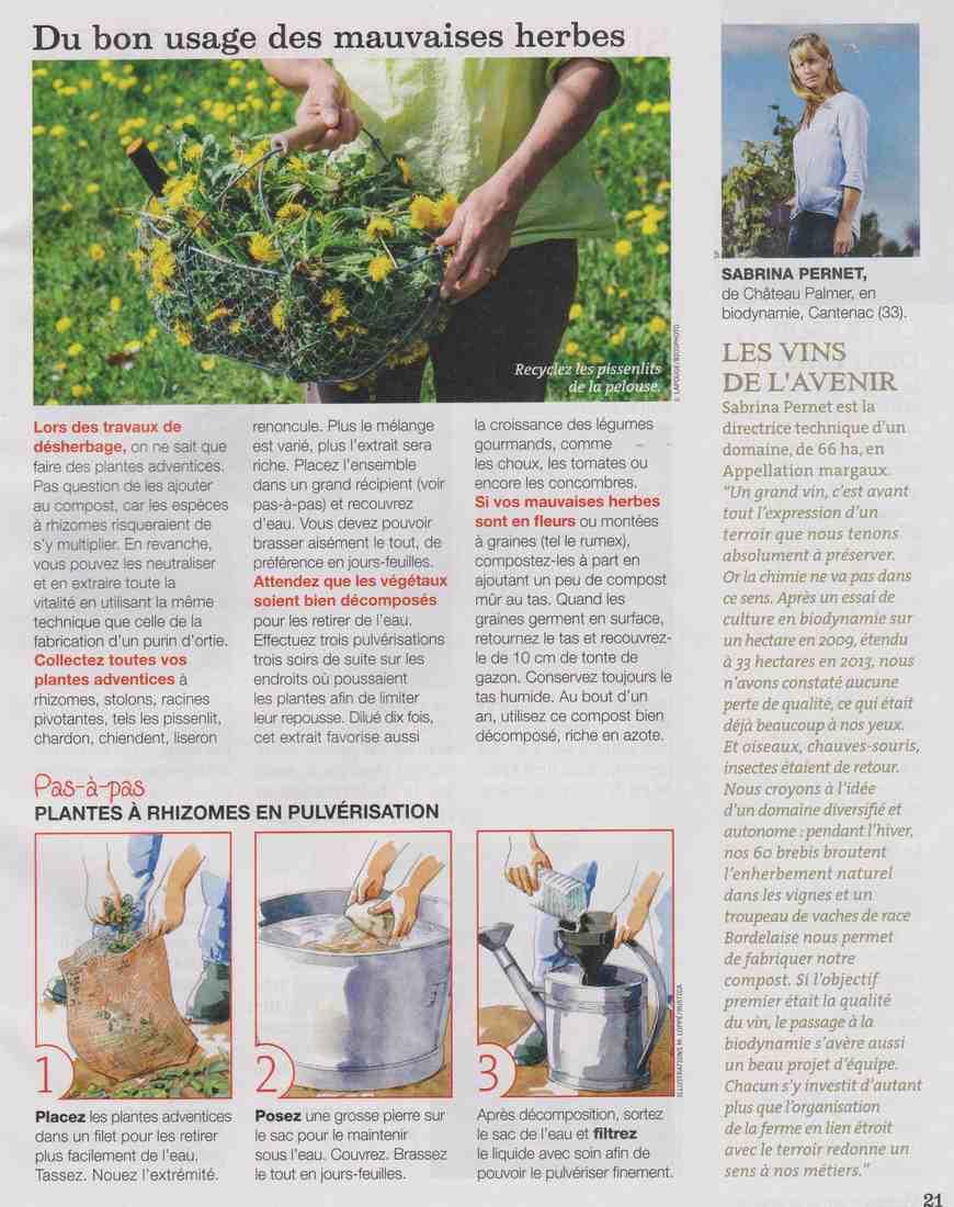 préparer l'automne et l'hiver - Page 4 B119