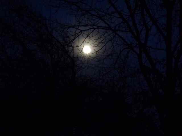 51 - 'Vues de nuit' !!! Claire11