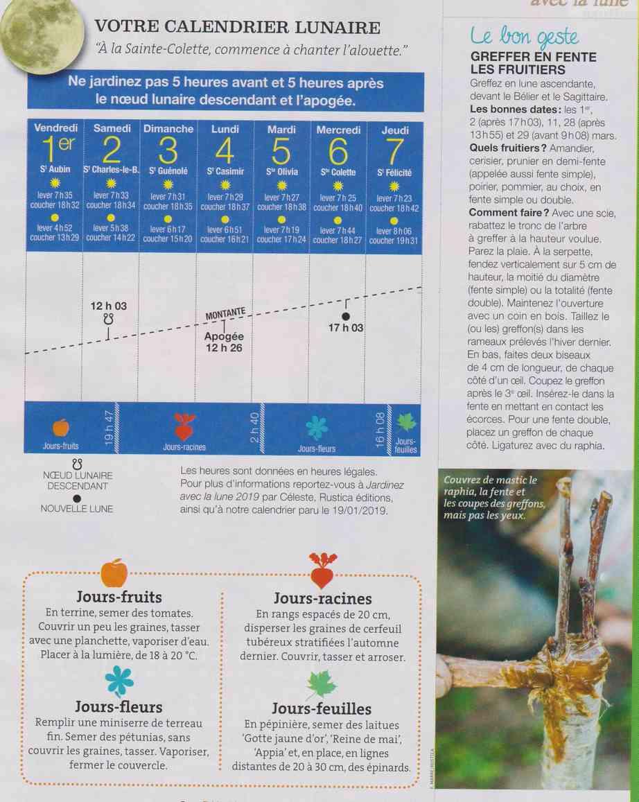 votre calendrier lunaire de la semaine - Page 3 E21