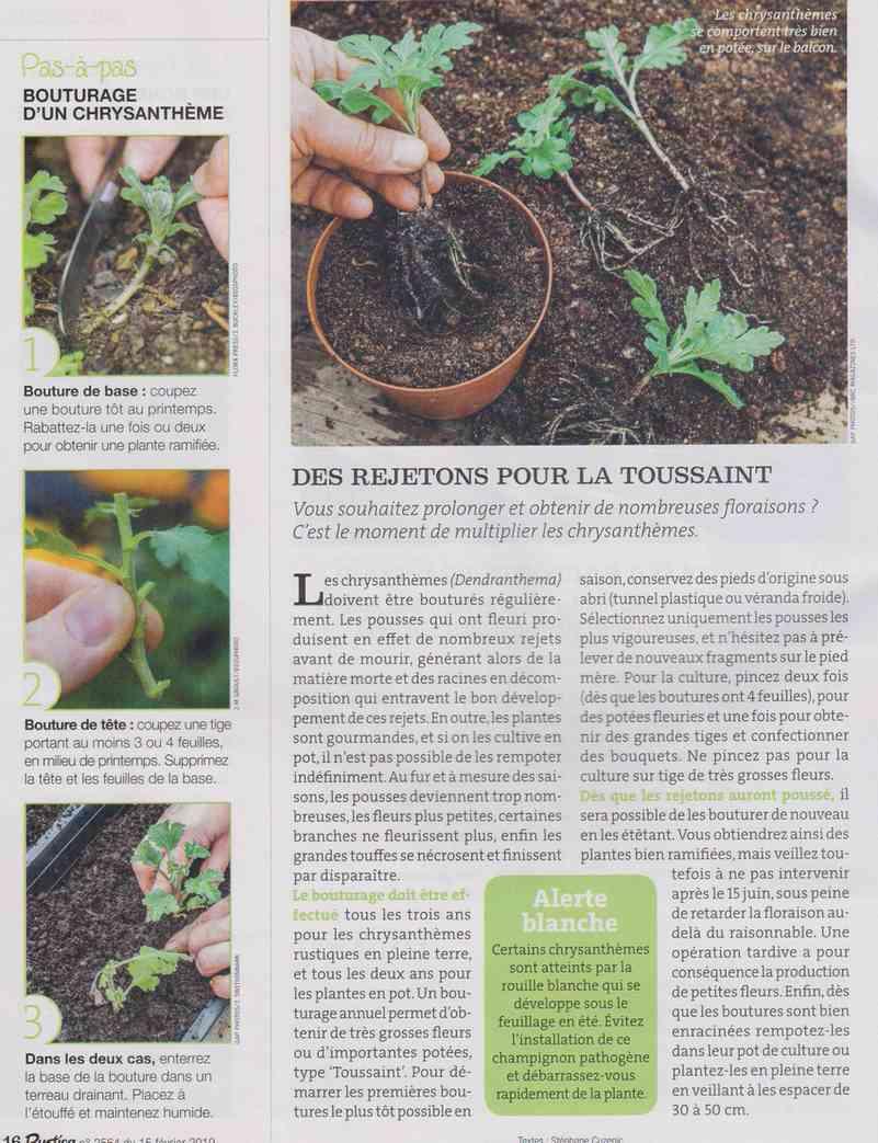 préparer l'automne et l'hiver - Page 5 E216