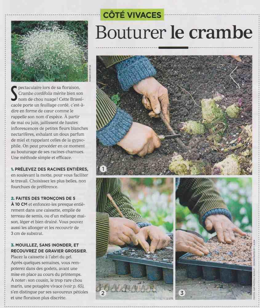 préparer l'automne et l'hiver - Page 4 H11