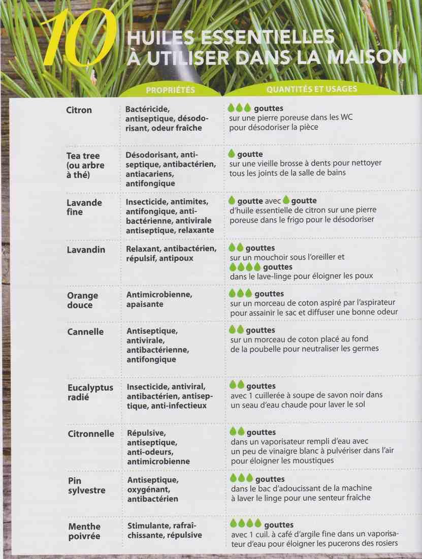 ces plantes qui nous veulent du bien.... M11
