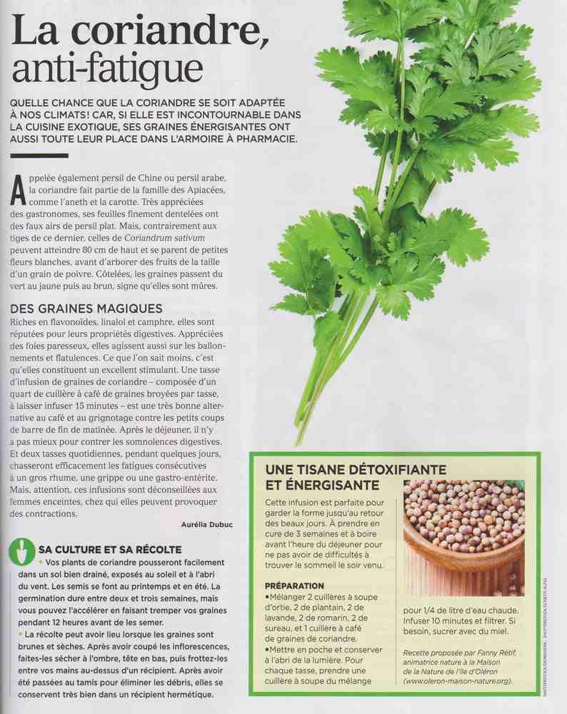 les plantes qui soignent - Page 2 M114