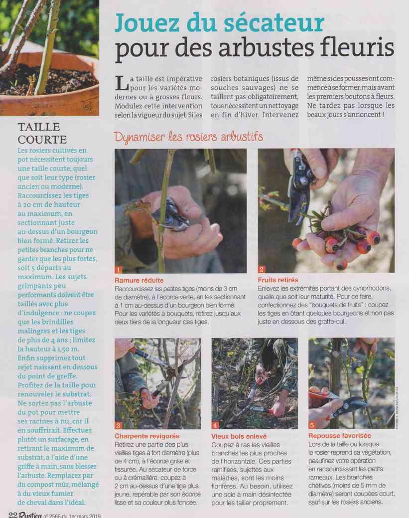 préparer le printemps - Page 2 M1410