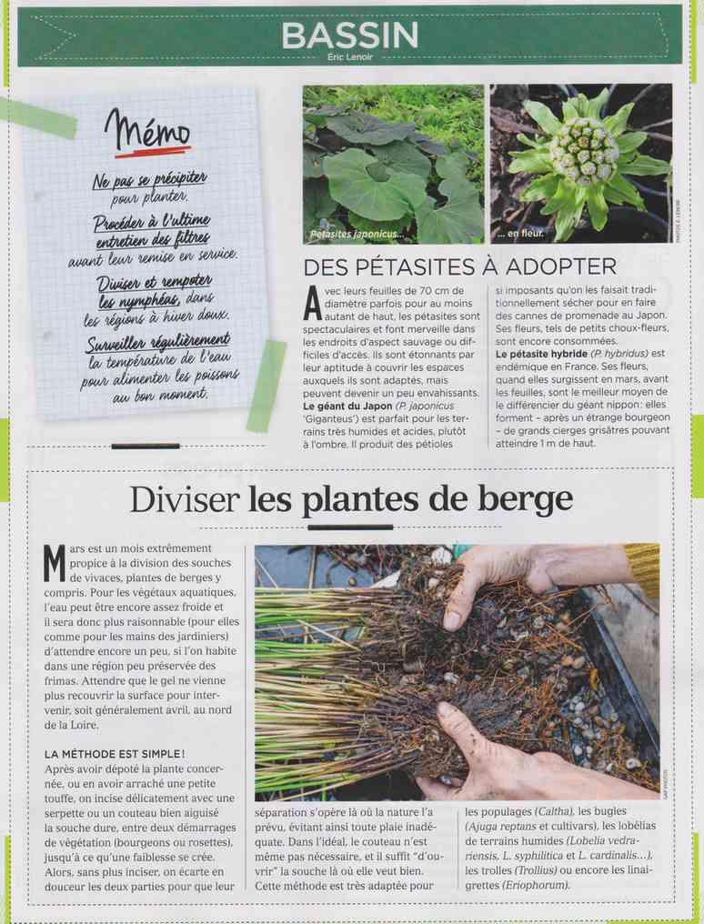 préparer le printemps - Page 2 M313