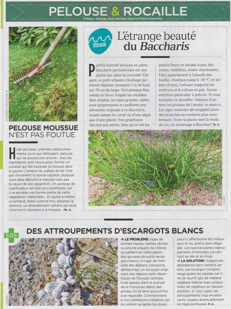 préparer le printemps - Page 2 M412