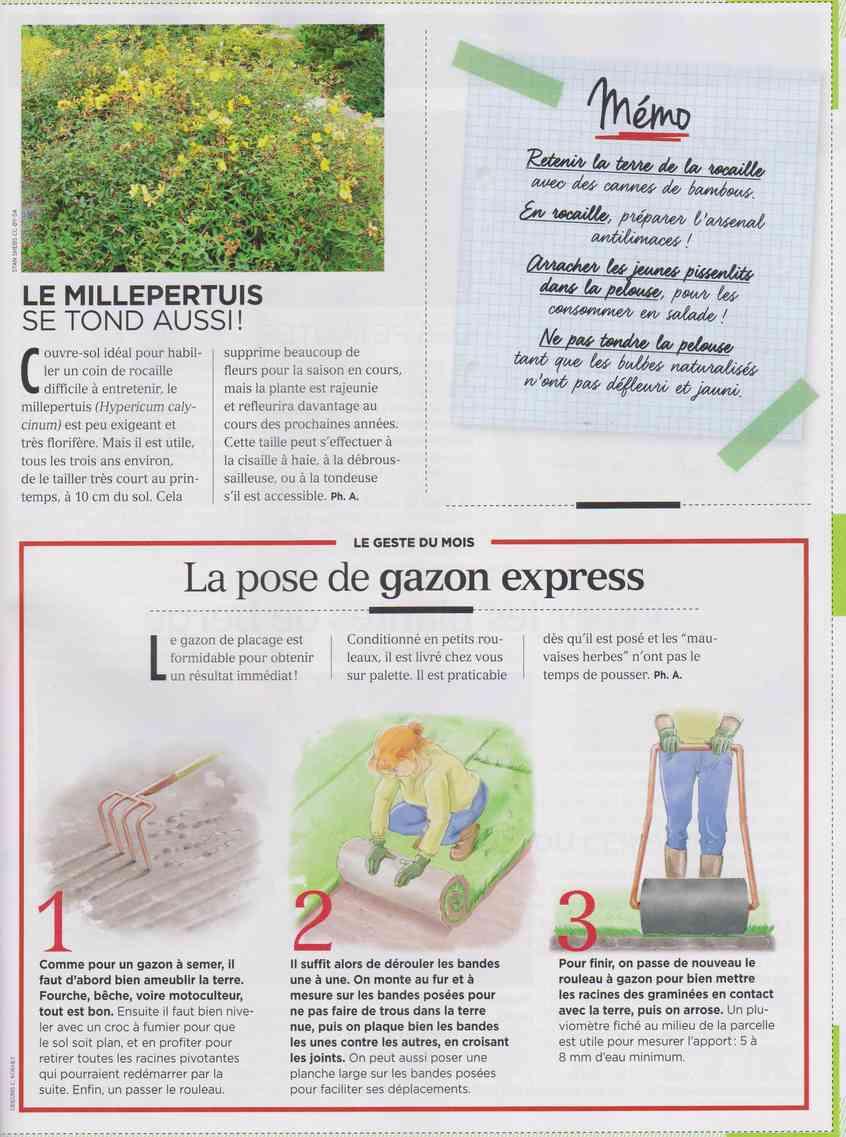 préparer le printemps - Page 2 M511