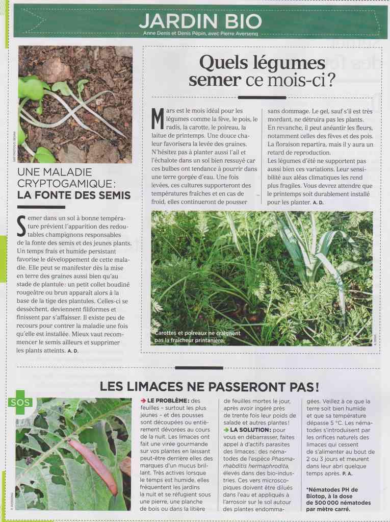 préparer le printemps - Page 2 M910