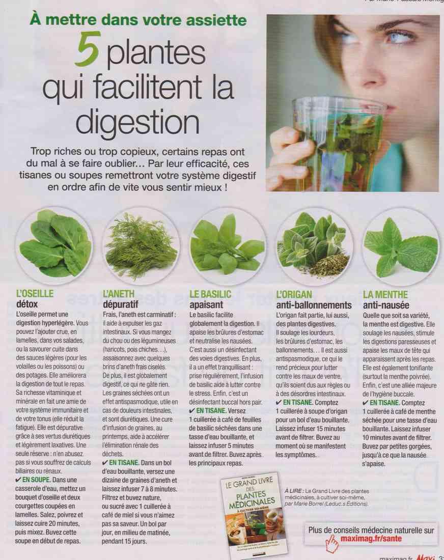 les plantes qui soignent - Page 3 N113