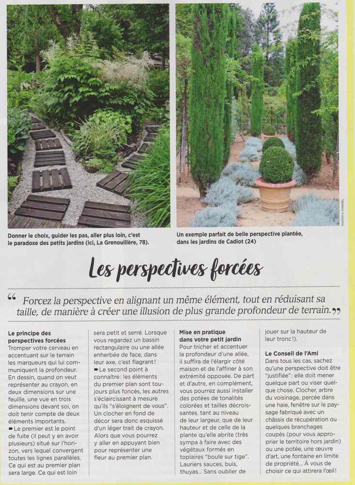 au jardin - Page 10 Petits14