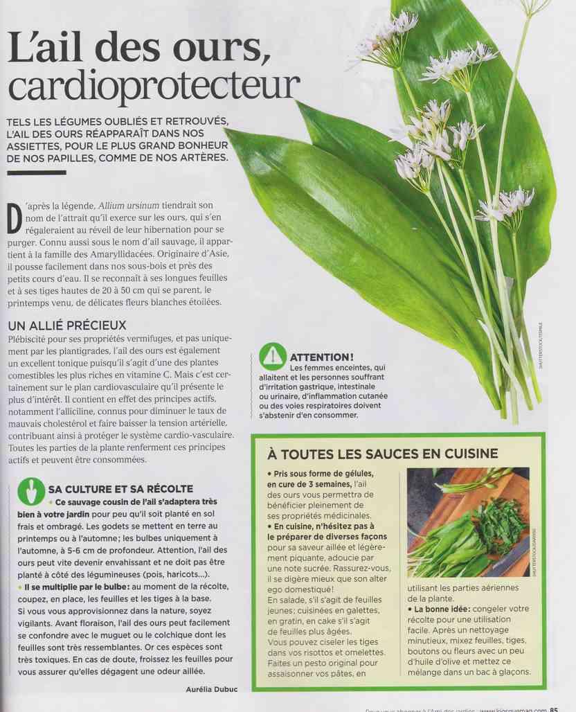 les plantes qui soignent - Page 4 Q218