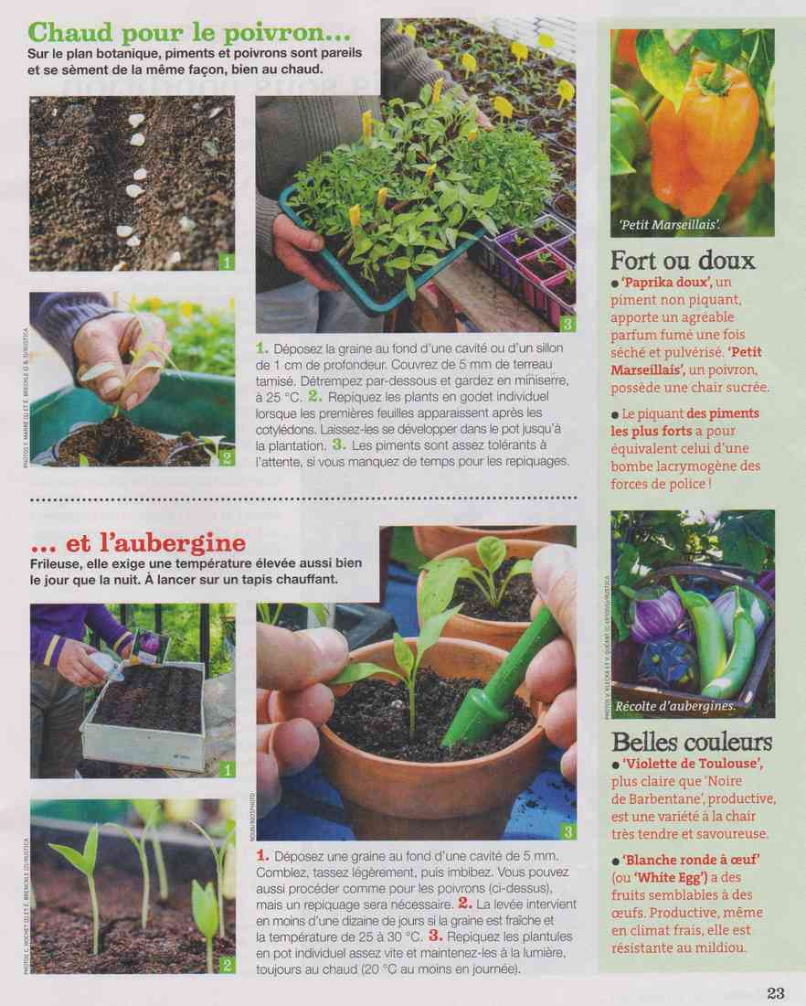 préparer le printemps - Page 3 Q315