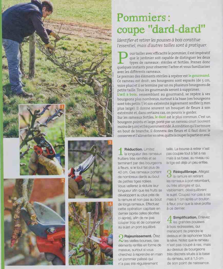préparer l'automne et l'hiver - Page 4 S212