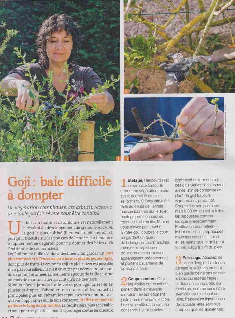 préparer l'automne et l'hiver - Page 4 S411