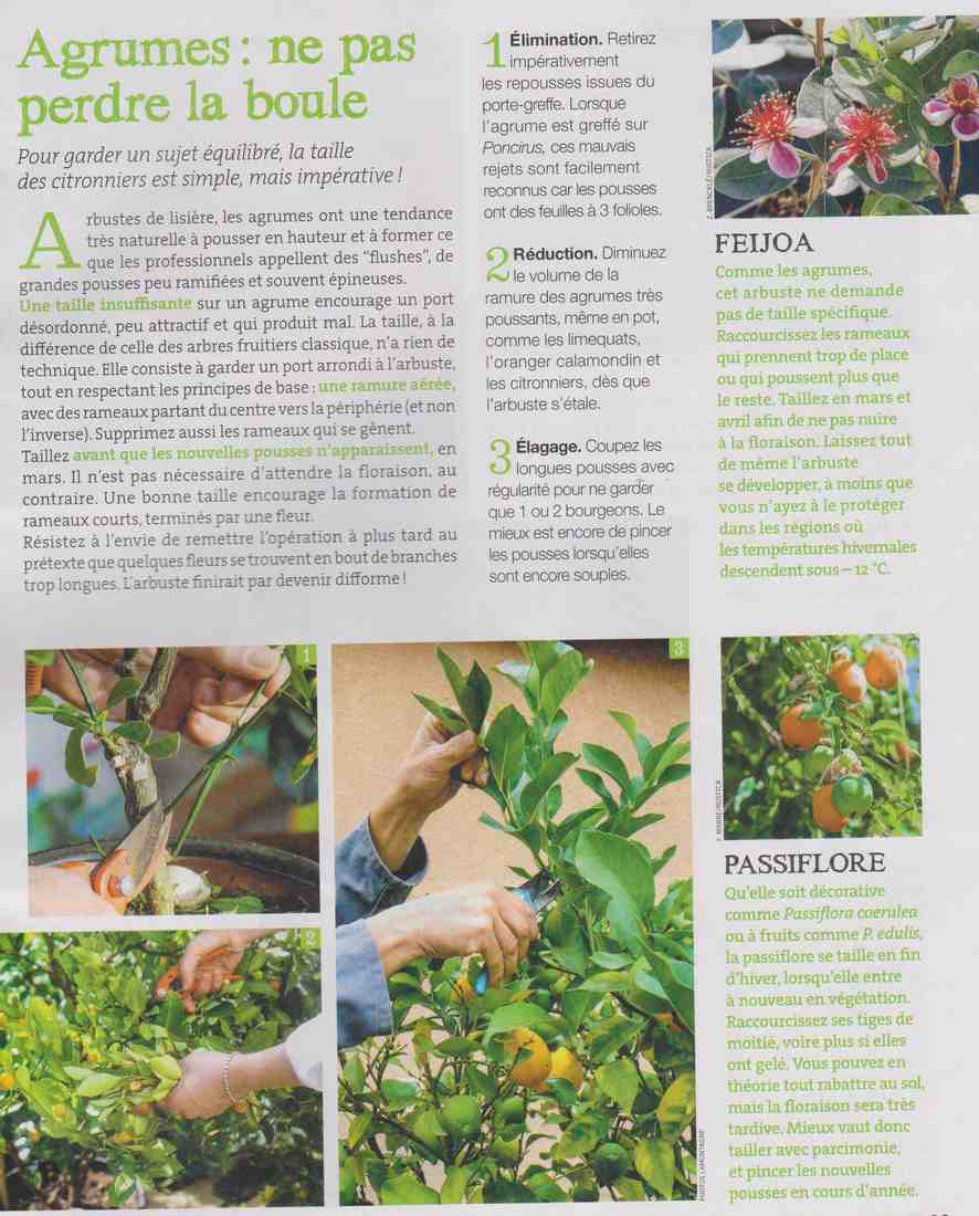 préparer l'automne et l'hiver - Page 4 S511