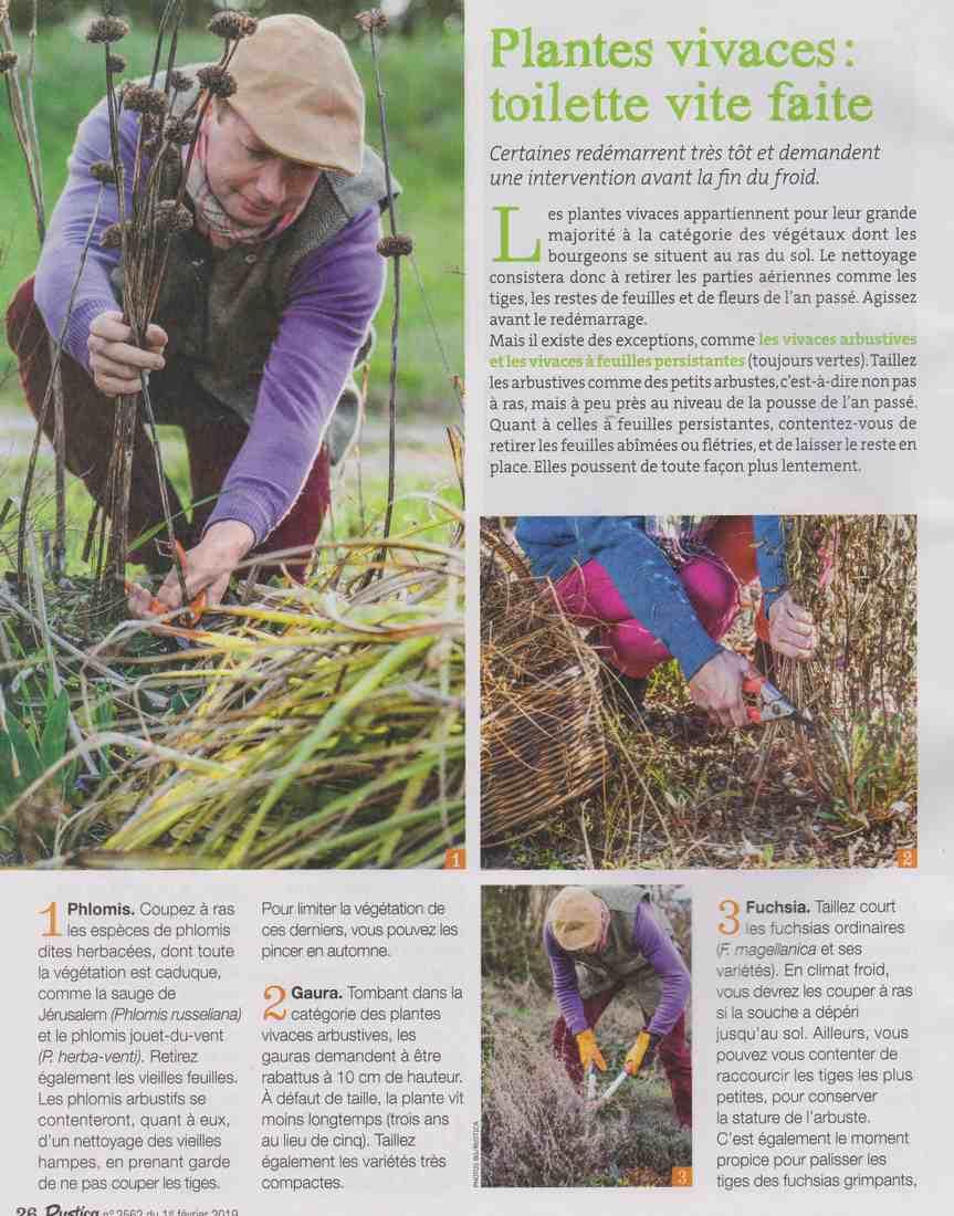 préparer l'automne et l'hiver - Page 4 S811