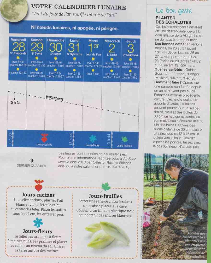 votre calendrier lunaire de la semaine - Page 3 T13