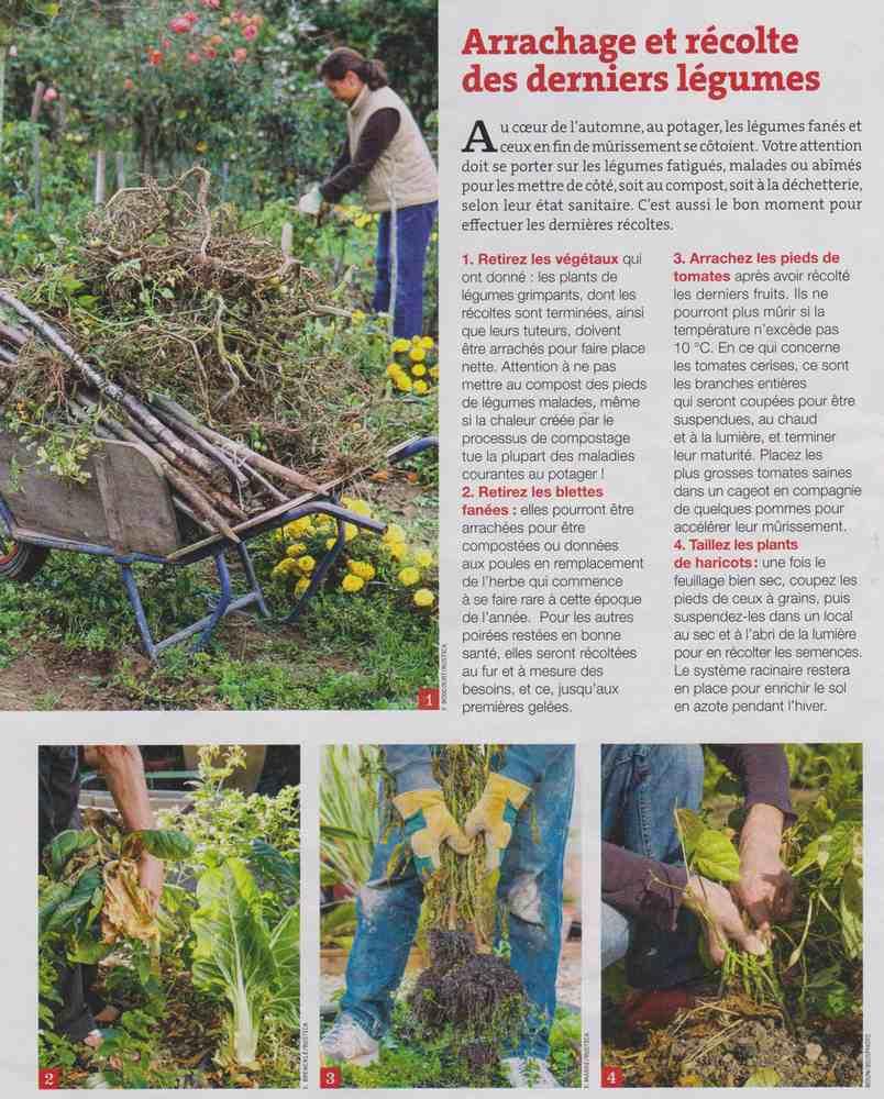 préparer l'automne et l'hiver - Page 2 W110