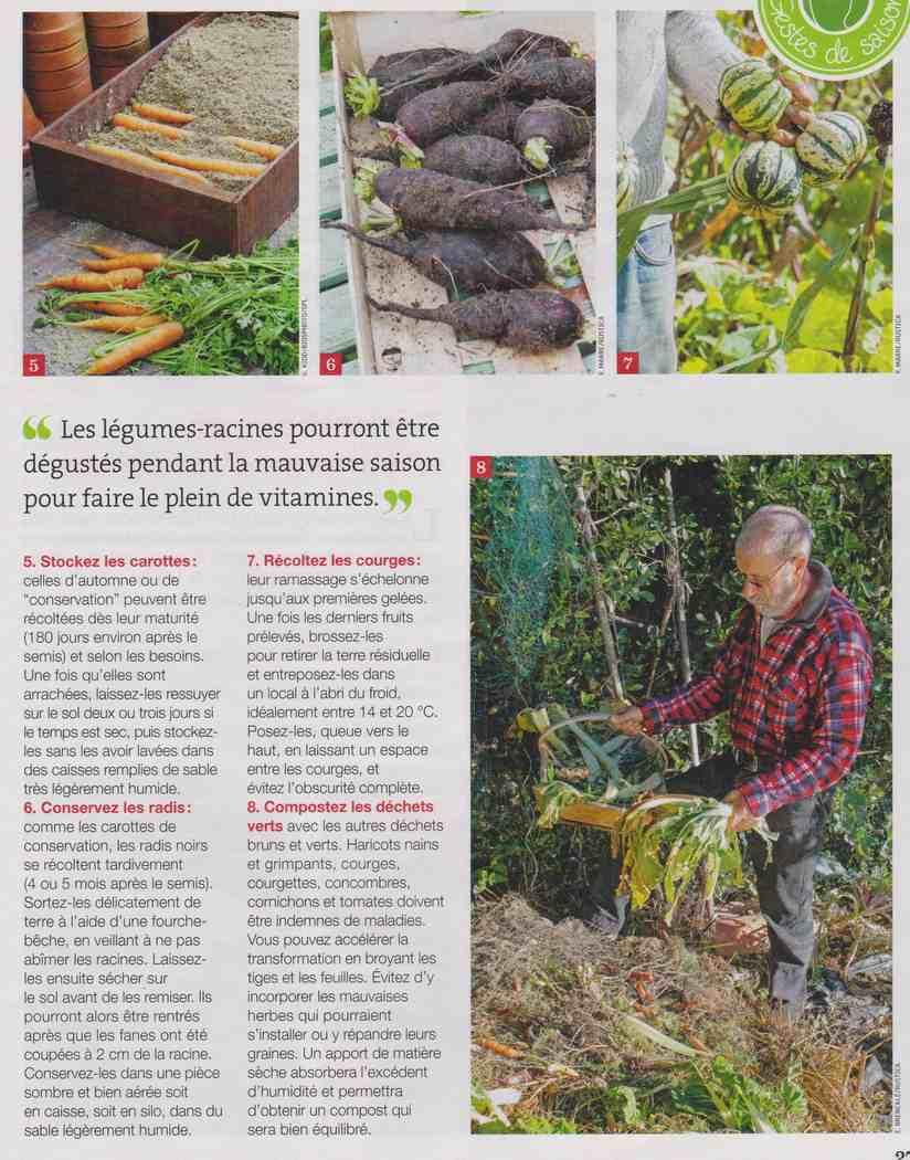 préparer l'automne et l'hiver - Page 2 W210